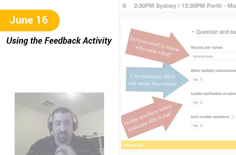 Using the Feedback Activity